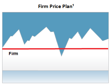 Fixed Price Plan